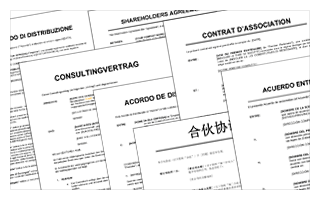 Consultingvertrag Lang Vorlagen Und Muster Biztreecom